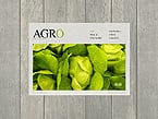 Agriculture Website  Template 38380