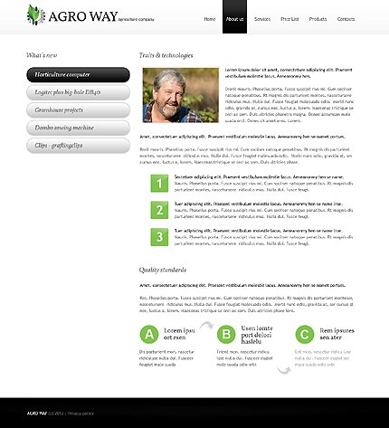 Template 38517 ( About Us Page ) ADOBE Photoshop Screenshot