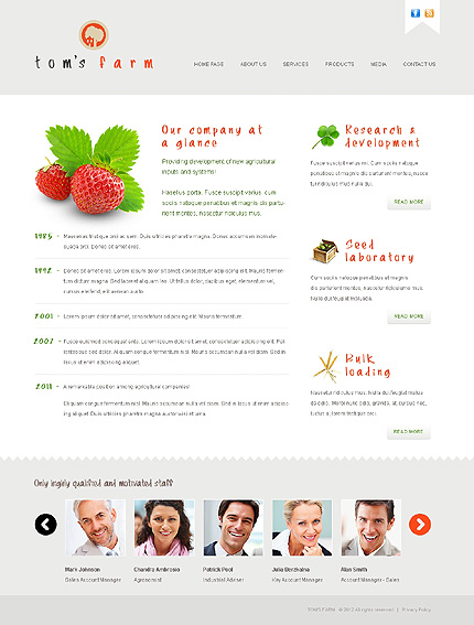Template 38564 ( About Us Page ) ADOBE Photoshop Screenshot