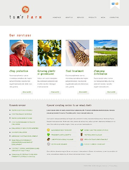 Template 38564 ( Services Page ) ADOBE Photoshop Screenshot