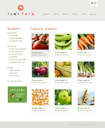 Template 38564 ( Products Page ) ADOBE Photoshop Screenshot
