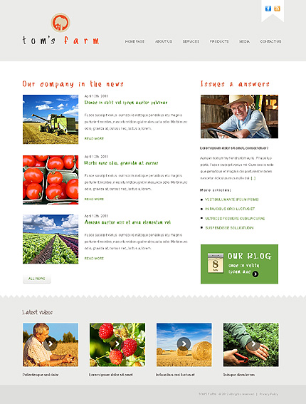 Template 38564 ( Media Page ) ADOBE Photoshop Screenshot