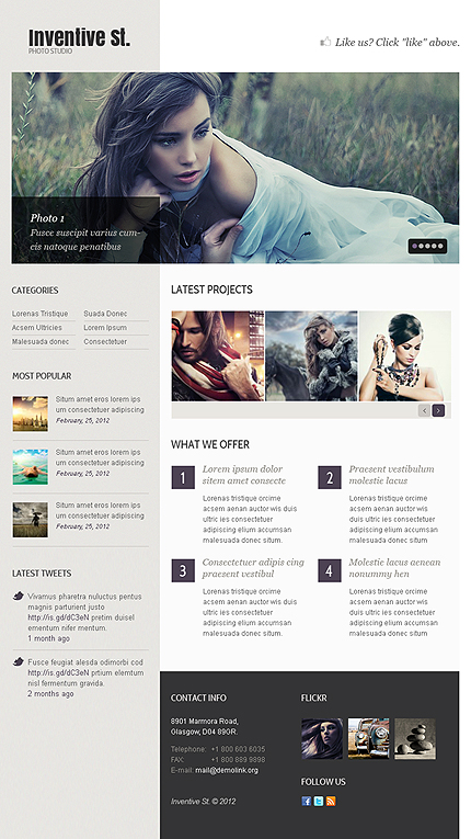 ADOBE Photoshop Template 38631 Home Page Screenshot
