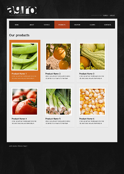 Template 38665 ( Products Page ) ADOBE Photoshop Screenshot