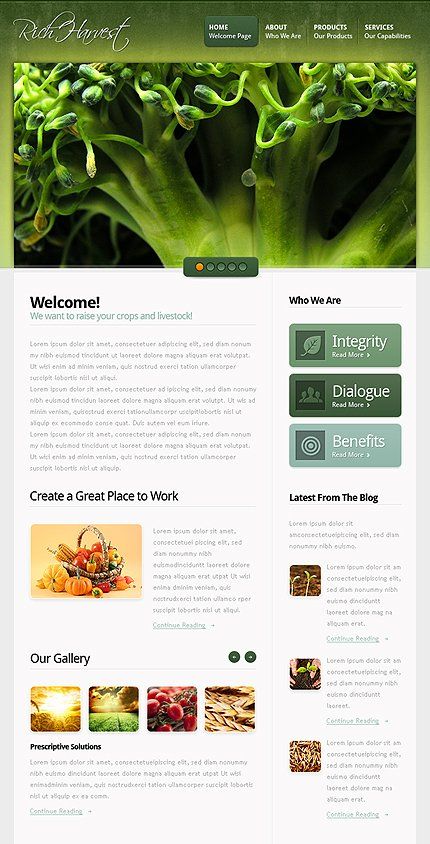 ADOBE Photoshop Template 38680 Home Page Screenshot
