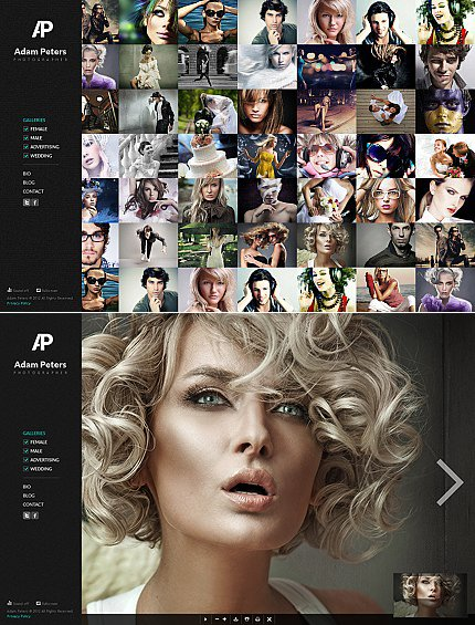 ADOBE Photoshop Template 38784 Home Page Screenshot