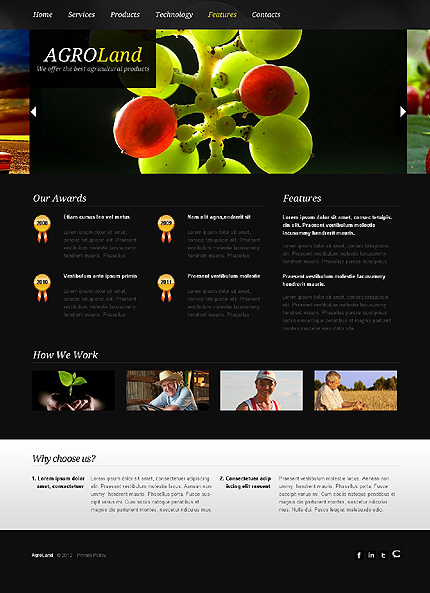 Template 38807 ( Features Page ) ADOBE Photoshop Screenshot