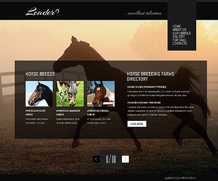 Template 38832 ( Our Horses Page ) ADOBE Photoshop Screenshot