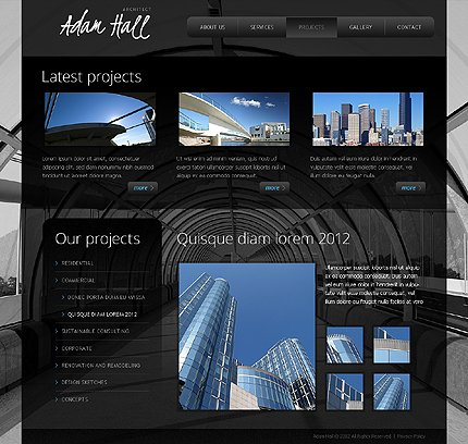 Template 38868 ( Projects Page ) ADOBE Photoshop Screenshot