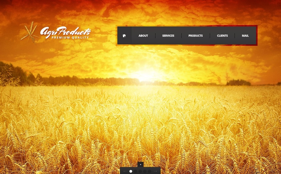 Flash CMS Template over Landbouw  New Screenshots BIG