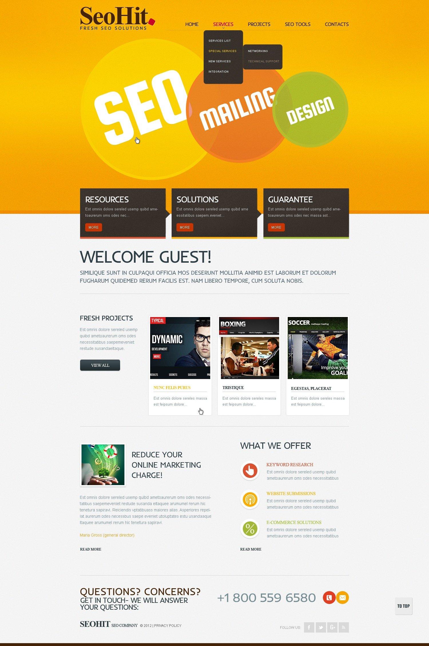 seo website website template 38805. Black Bedroom Furniture Sets. Home Design Ideas