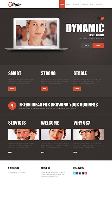 Joomla Theme/Template 39073 Main Page Screenshot