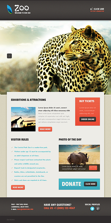 ADOBE Photoshop Template 39083 Home Page Screenshot