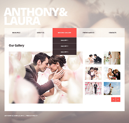 Template 39108 ( Wedding Gallery Page ) ADOBE Photoshop Screenshot