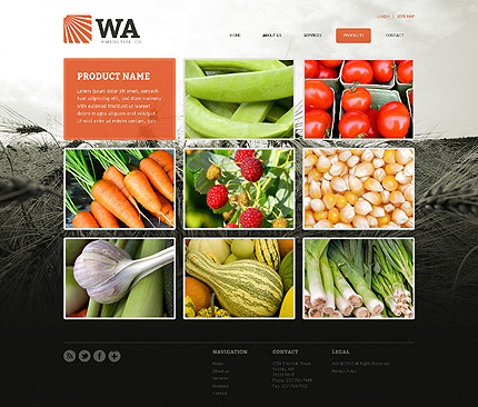 Template 39385 ( Products Page ) ADOBE Photoshop Screenshot