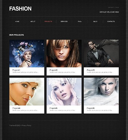 Template 39467 ( Projects Page ) ADOBE Photoshop Screenshot