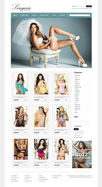 ADOBE Photoshop Template 39521 Home Page Screenshot