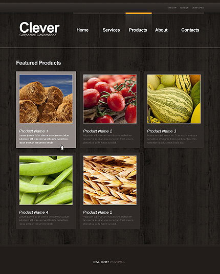 Template 39548 ( Products Page ) ADOBE Photoshop Screenshot