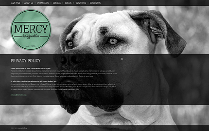 Template 39568 ( Privacy Policy Page ) ADOBE Photoshop Screenshot
