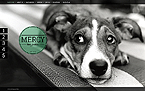 Animals & Pets Website  Template 39568