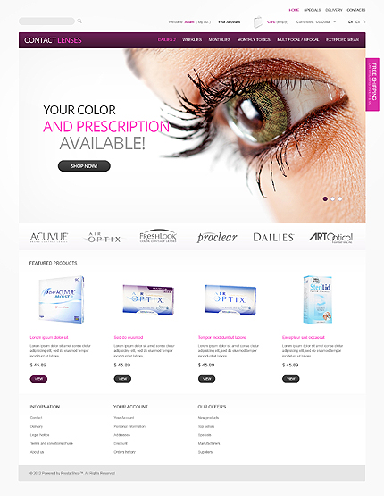 ADOBE Photoshop Template 39666 Home Page Screenshot