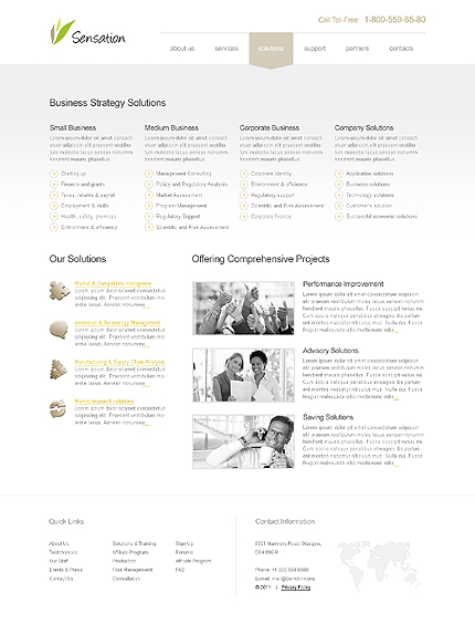 Template 39677 ( Solutions Page ) ADOBE Photoshop Screenshot
