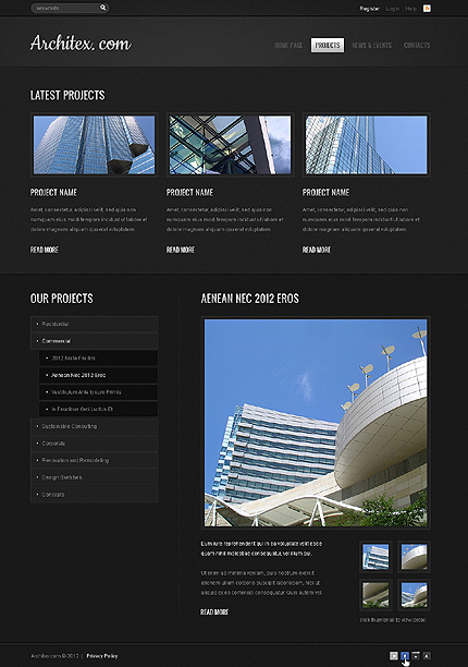Template 39729 ( Projects Page ) ADOBE Photoshop Screenshot