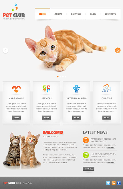 Drupal Template 39986 Main Page Screenshot