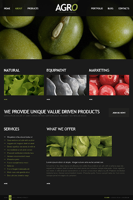 Drupal Template 39993 Main Page Screenshot