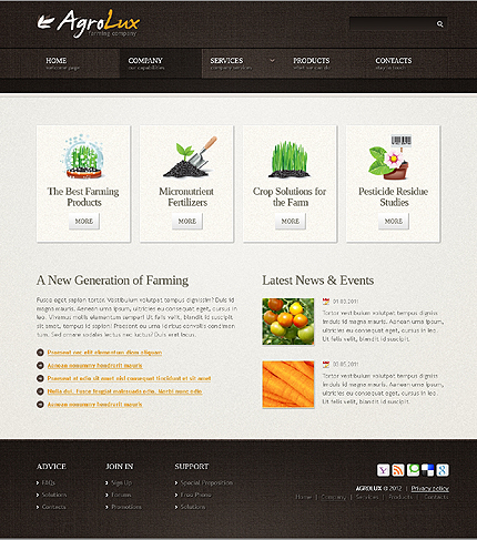 Template 40043 ( Company Page ) ADOBE Photoshop Screenshot
