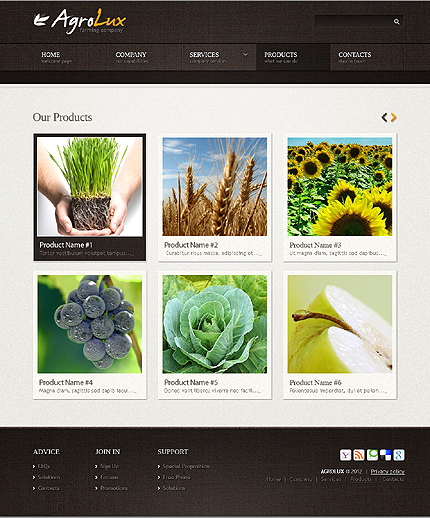 Template 40043 ( Products Page ) ADOBE Photoshop Screenshot