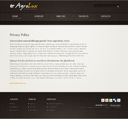 Template 40043 ( Privacy Policy Page ) ADOBE Photoshop Screenshot