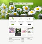 Website  Template 40045