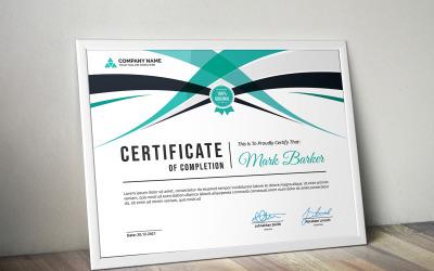Curvy certifikatmall