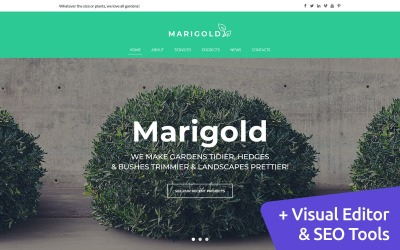 Marigold - Landscaping Services Moto CMS 3-sjabloon