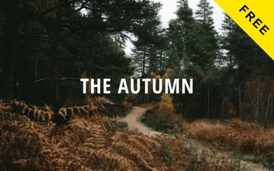 Autumn Lite - Free Creative Portfolio Website Drupal Template