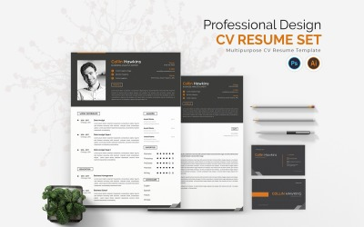 Professional Design CV Printable Resume Templates
