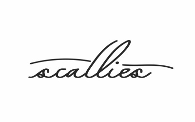 Scallies Signature Handwriting Fonts