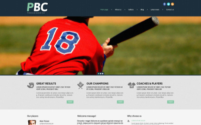 WordPress responsywny motyw baseballowy