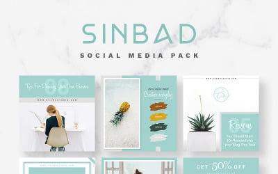 Шаблон соціальних медіа SINBAD Pack