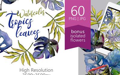 Tropics Leaves PNG Watercolor Set - Illustration