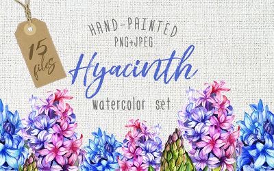 Aquarela colorida Hyacinth PNG - Ilustração
