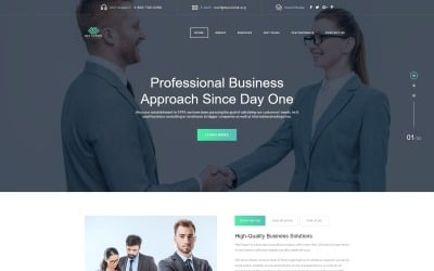 Net Expert - Business Consulting HTML5 Landing Page Template