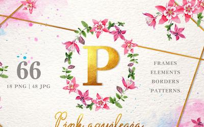 Pink Aquilegia Akwarela PNG - ilustracja