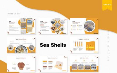 Sea Shells   Google Slides