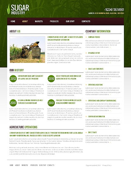 Template 40104 ( About Page ) ADOBE Photoshop Screenshot