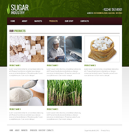 Template 40104 ( Products Page ) ADOBE Photoshop Screenshot