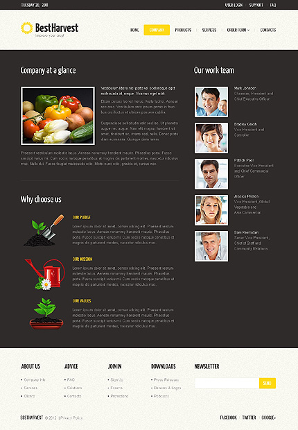 Template 40229 ( Company Page ) ADOBE Photoshop Screenshot