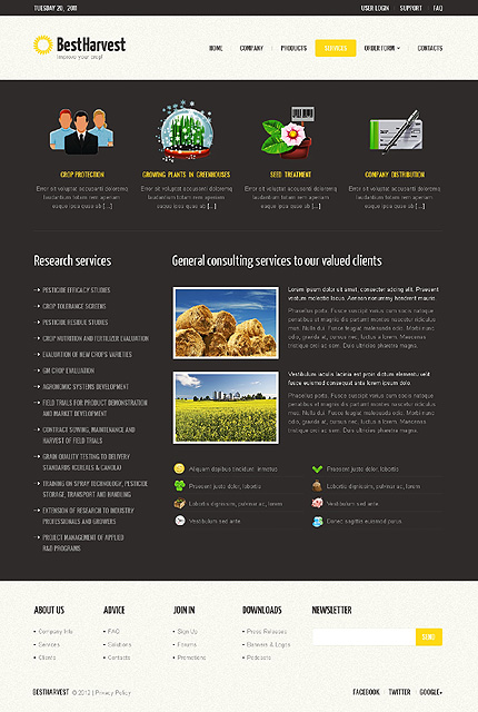 Template 40229 ( Services Page ) ADOBE Photoshop Screenshot