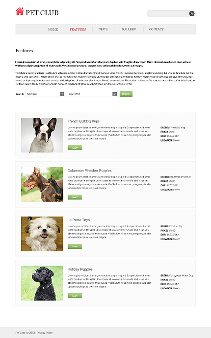Template 40309 ( Features Page ) ADOBE Photoshop Screenshot
